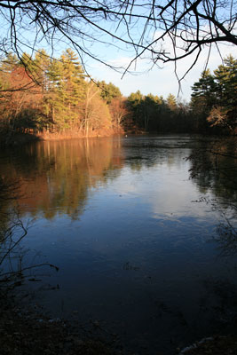 picture of Box Pond